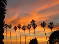 San Diego (12)