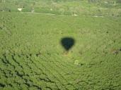napa-hot-air-balloon-2011-105