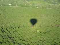 napa-hot-air-balloon-2011-105