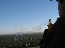 napa-hot-air-balloon-2011-108