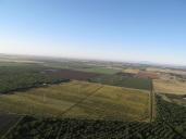 napa-hot-air-balloon-2011-109