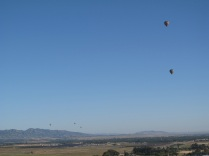 napa-hot-air-balloon-2011-118