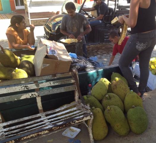 mexico-jackfruit.jpg